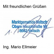 Ing. Mario Ellmeier